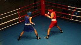Куда пропали деньги кузбасского бокса?