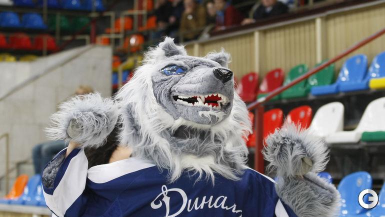 """""""Динамовский"""" Волк образца 2009 года действительно мог покусать, если бы вы попались ему на глаза. Фото Александр ФЕДОРОВ, """"СЭ"""""""