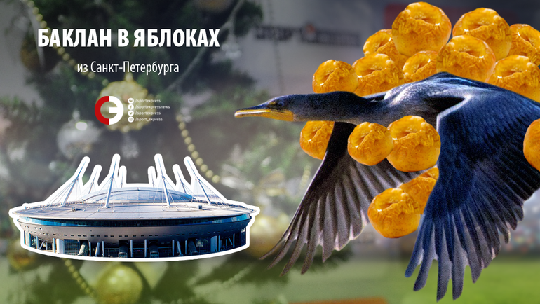 """Баклан в яблоках из Санкт-Петербурга. Фото """"СЭ"""""""