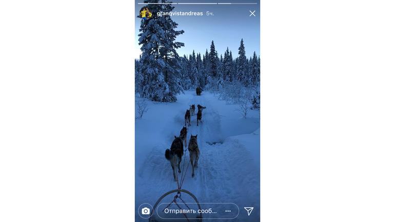 Андреас ГРАНКВИСТ катается на собачьей упряжке. Фото instagram.com/
