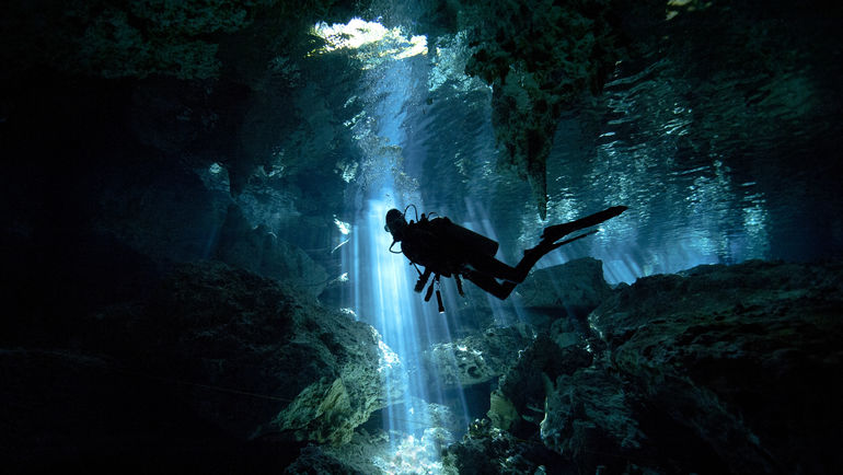 Сафари под водой.
