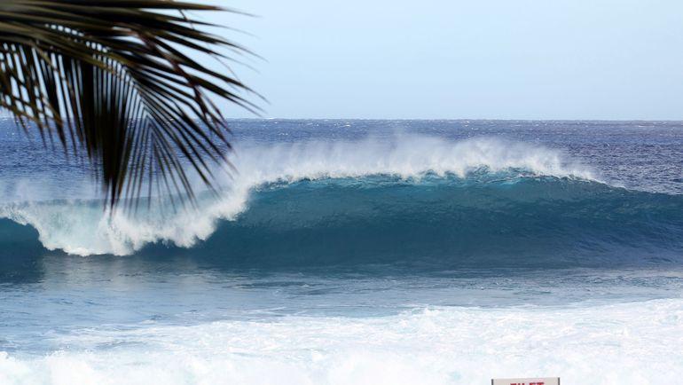Этап Мировой лиги серфинга вАвстралии остановили после нападения акулы