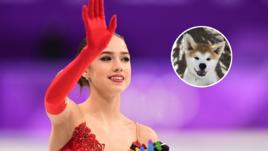 Редкая акита-ину для олимпийской чемпионки Загитовой