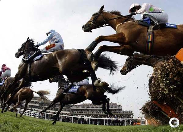 Челтнемские скачки в графстве Глостершир. Фото REUTERS