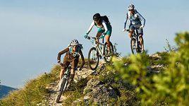 Чем лыжи отличаются от велосипеда?..