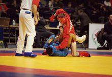 Российские победы, болгарская сенсация и олимпийские мечты