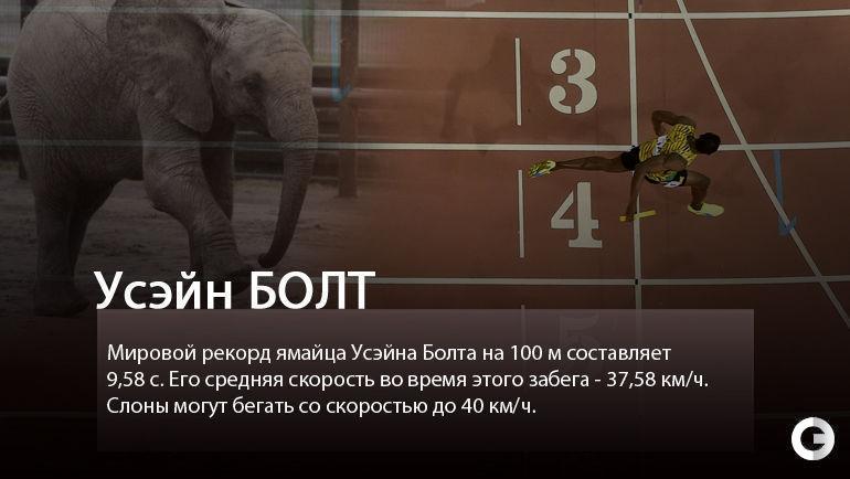 """Усэйн БОЛТ. Фото """"СЭ"""""""