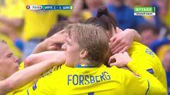 Ирландия - Швеция, Гол, 1-1, Кларк (автогол)
