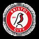 Бристоль Сити