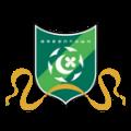Ханчжоу Гринтаун