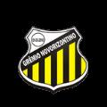 Гремиу Новоризонтину U21