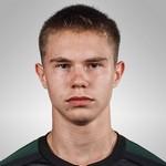 Илья Воротников