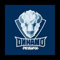Динамо-Раубичи