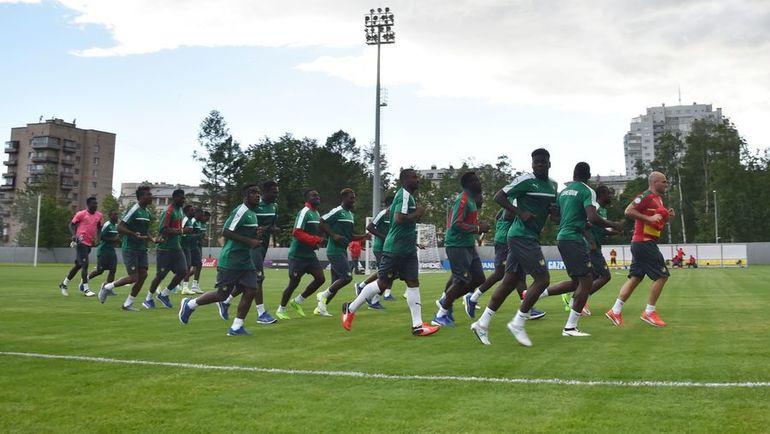 Предматчевая тренировка сборной Камеруна. Фото AFP