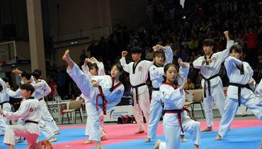Чемпионат России по тхэквондо впервые состоялся на Дону