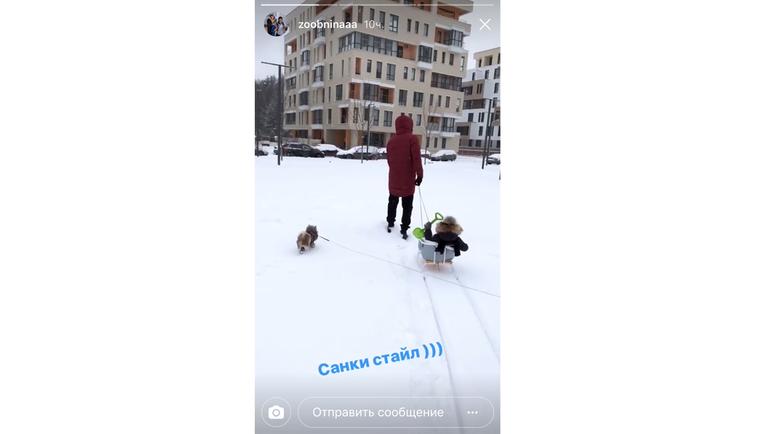 Роман ЗОБНИН и катание на санках. Фото instagram.com