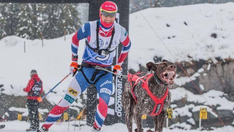 Оле Эйнар БЬОРНДАЛЕН в гонке на собачьих упряжках. Фото VG
