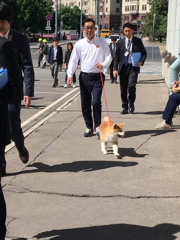 Алина Загитова получила в подарок щенка. Фото facebook.com/O.Ermolina/