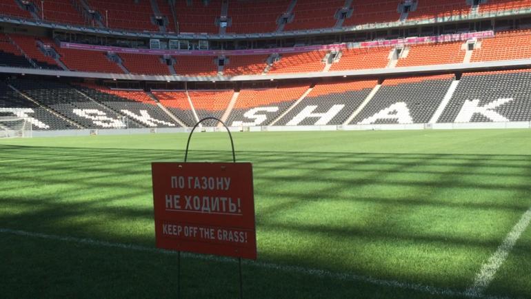"Стадион ""Донбасс Арена"": поле. Фото Дмитрий ЗЕЛЕНОВ, ""СЭ"""