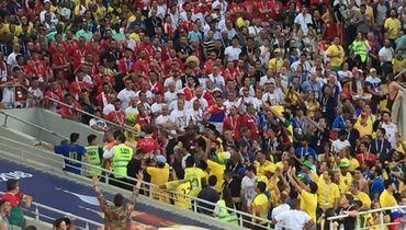 Сербского фаната вывели со стадиона за драку
