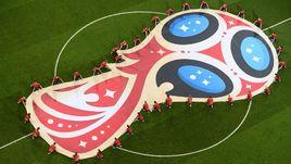 Лого ЧМ-2018 на поле стадиона турнира.