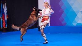 Россия – лучшая в танцах, даже с собаками. Это не шутка