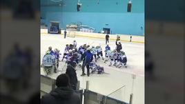 Массовая драка 9-летних хоккеистов на турнире в Башкортостане