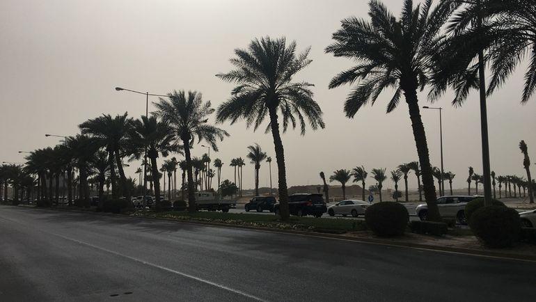 """В Дохе почти нет тротуаров и переходов. Фото Гоша Чернов, """"СЭ"""""""