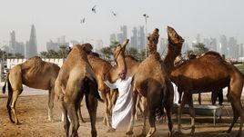 Катар, каким вы его еще не видели. Здесь пройдет ЧМ-2022