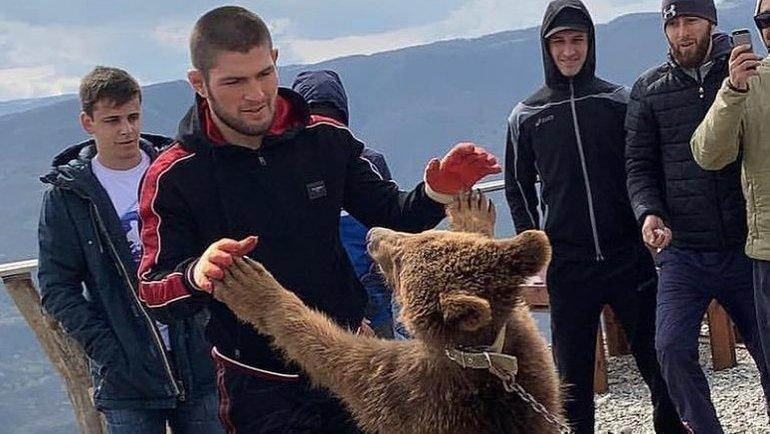 «Вместе со старым другом» - так Хабиб подписал фотографию с медведем в Instagram в апреле 2019-го.