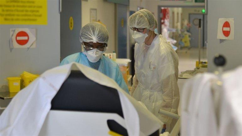 Ученые изАвстралии нашли лекарство, подавляющее коронавирус за48 часов. Фото AFP