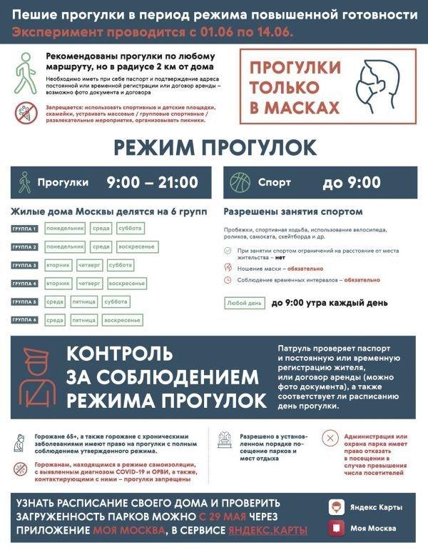 Правила прогулок изанятий спортом насвежем воздухе вМоскве с1июня. Фото Оперштаб Москвы