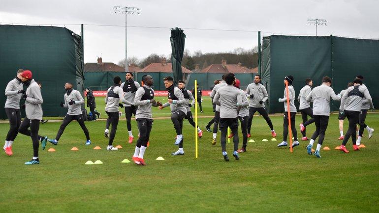 Тренировка «Ливерпуля». Фото AFP