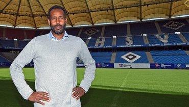 Новым главным тренером «Гамбурга» стал Даниэль Тиун