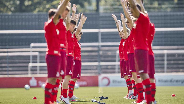 Игроки «Кельна» натренировке. Фото ФК «Кельн».