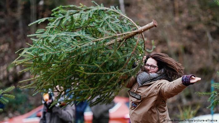 Чемпионат пометанию рождественских елок. Фото DW