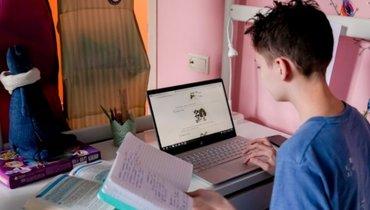 Собянин заявил опродлении дистанционного обучения для школьников