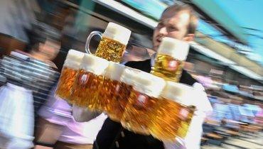 Регулярное употребление пива наносит серьезный ущерб здоровью.