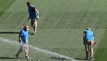 Рабочие проверяют газон настадионе «Динамо».