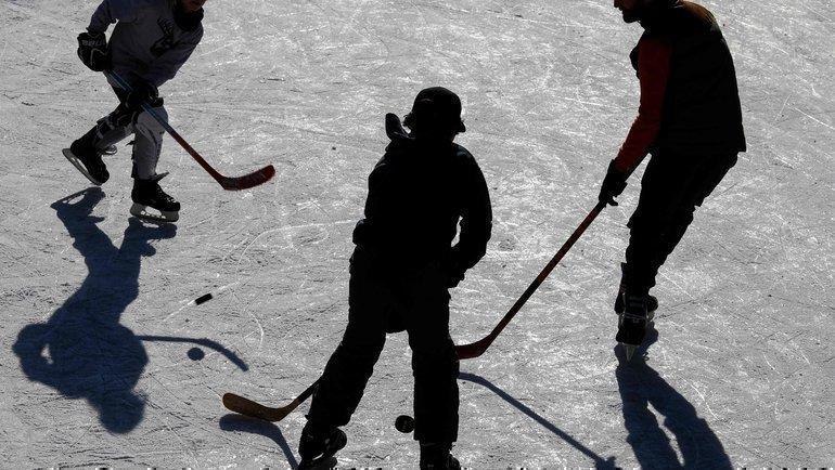 Хоккеисты. Фото AFP