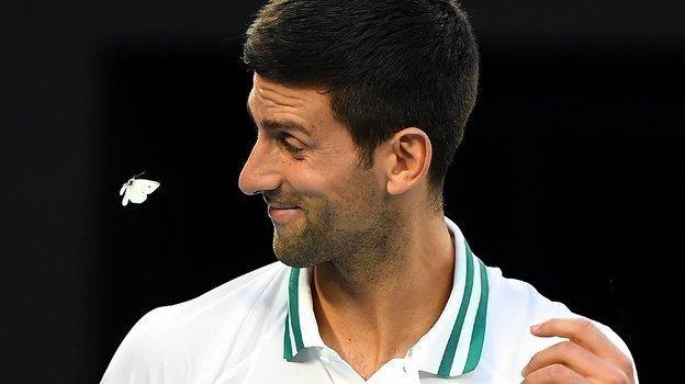 Снова бабочка иснова рядом сбудущим чемпионом. Нет, они точно что-то знают. Фото AFP