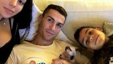 Криштиану Роналду отправил своего кота наотдых вИспанию после долгого лечения