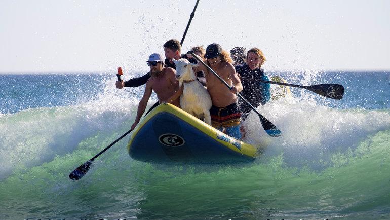 Житель Калифорнии Дана МакГрегор занимается обучением детей серфингу. Одна изглавных причин, которая может помешать детям встать надоску— страх перед водой.