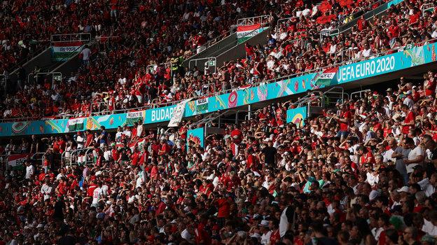 Полные трибуны на матче Венгрия - Португалия. Фото Reuters