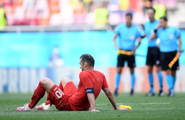 Капитан сборной Македонии Горан Пандев. Фото сайт УЕФА