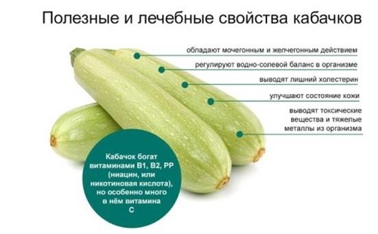 Полезные илечебные свойства кабачков.