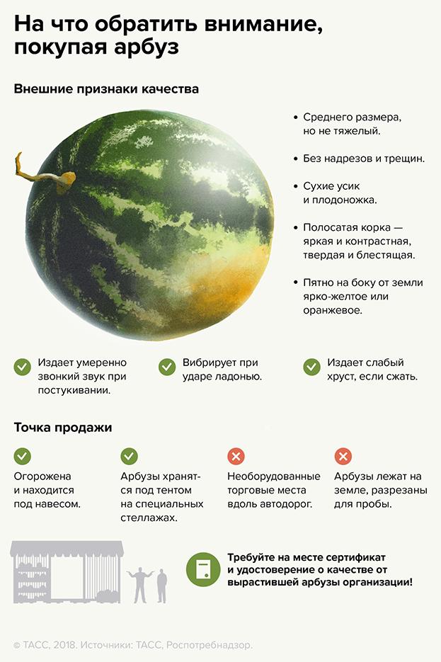 Как выбирать арбуз. Фото РОСПОТРЕБНАДЗОР
