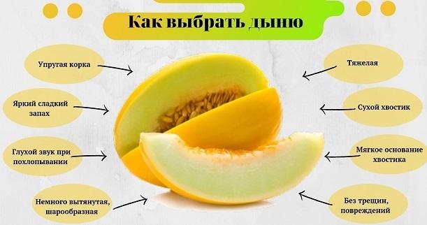 Как выбрать дыню. Фото Славянские ведомости