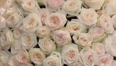 Анна Кастерова показала огромный букет цветов, который ейподарил Малкин