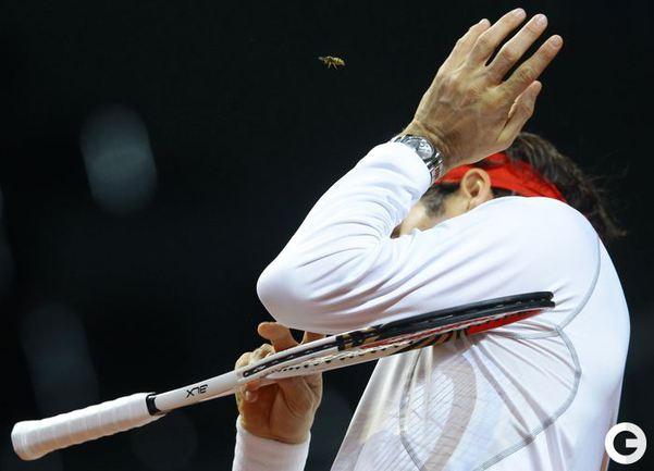 Роджер Федерер .